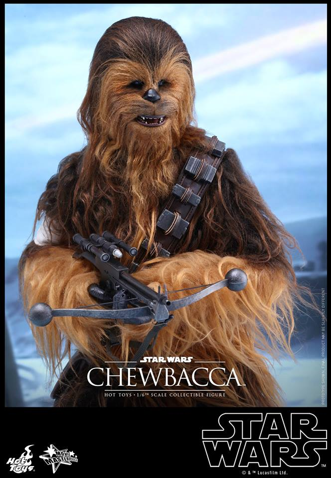 201606_Hot Toys Chewbacca  (2)