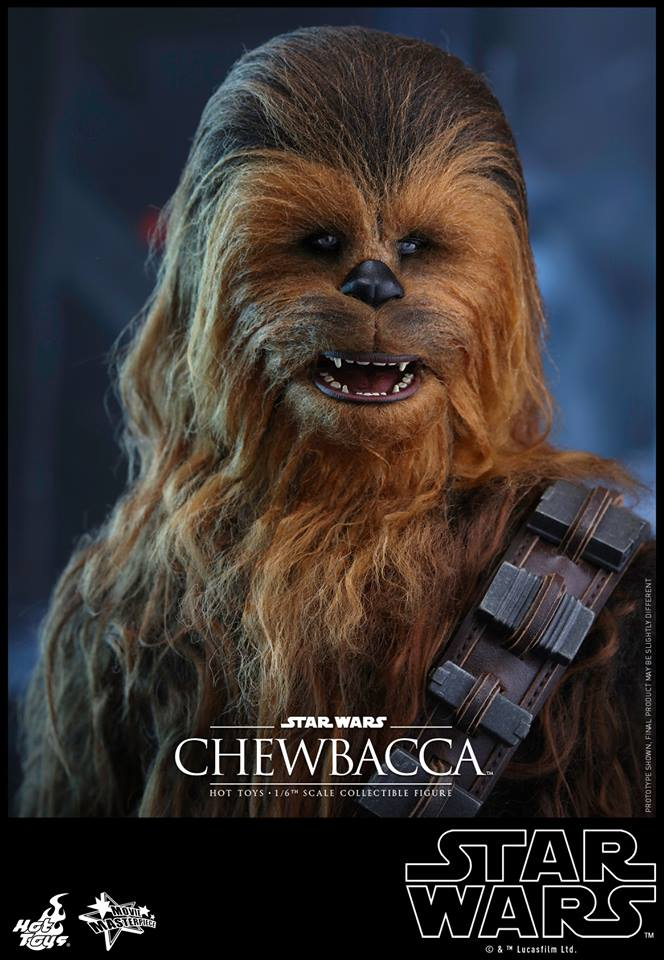 201606_Hot Toys Chewbacca  (8)