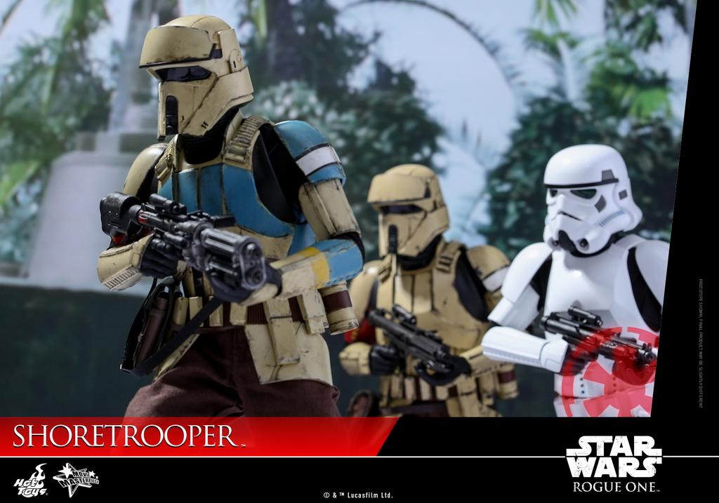 hot-toys-swro-shoretrooper-collectible-figure_pr3